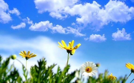 Wpłyń Pozytywnie na Sen - Czynności, Które Warto Wykonać w Ciągu Dnia