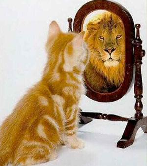 Wizualizuj Marzenia Działaj I Myśl Pozytywnie